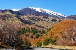 Autumn trip on Mt. Etna